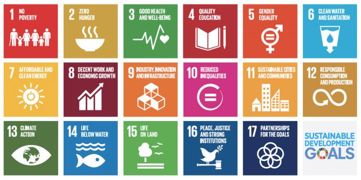UN Sustainable Development Goals: The Role of Cities in Implementation