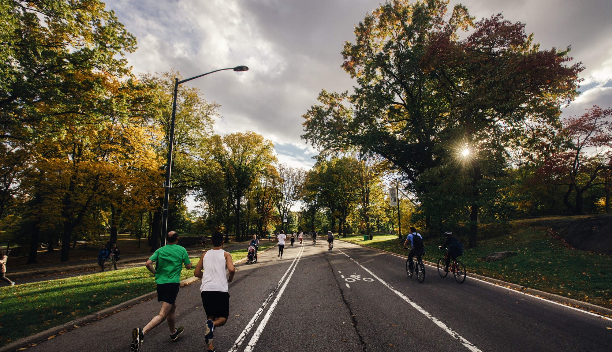 runners and bicyclists at park
